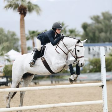 ulcer medication helps to heal horses with anxiety and stress