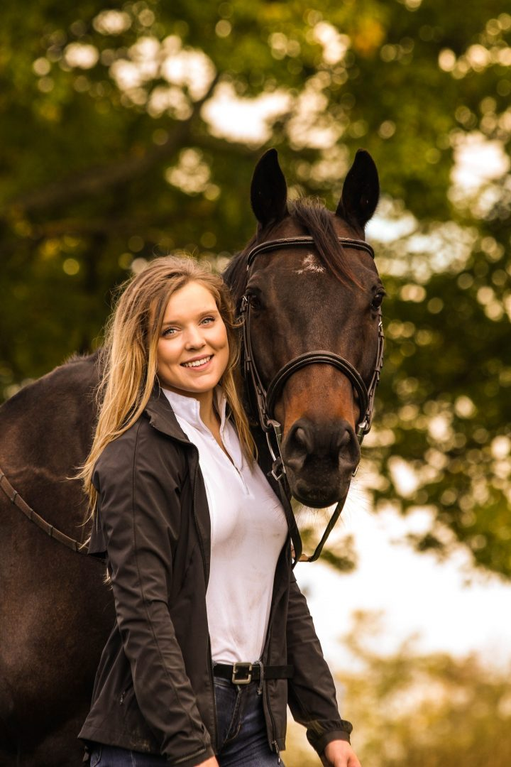 find the right horse stable for you